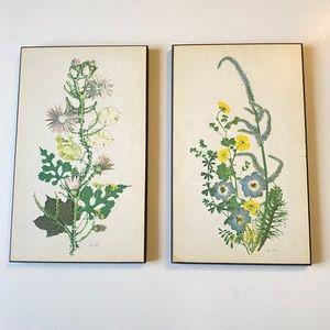 Vintage Botanical Illustration wall hanging set